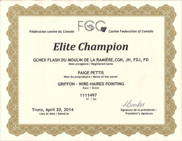 Flash_FCC_ELITE_Cert_001.jpg